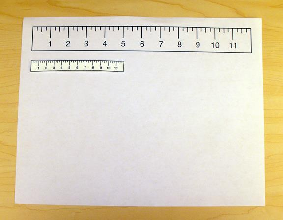 Shrink Film Before and After Ruler Image